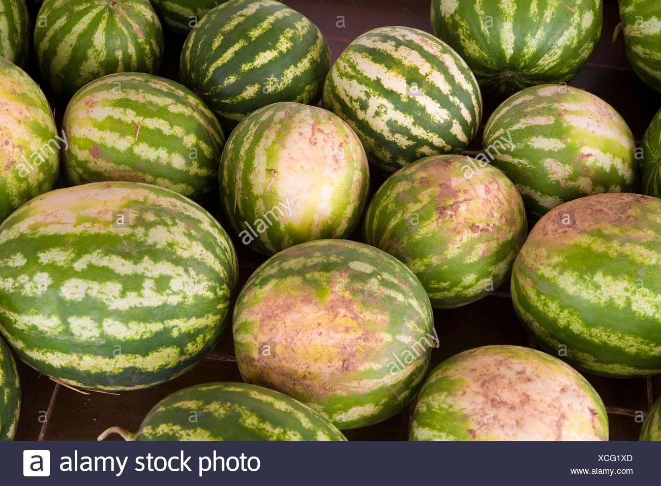 Melons. Minorca. Balearic Islands. Spain - Stock Image