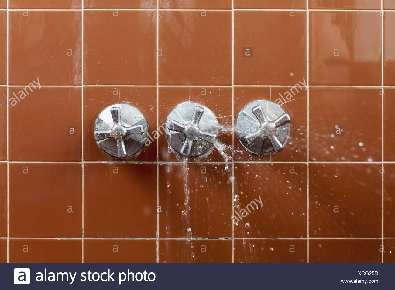 A shower faucet handle spraying leaking water - Stock Image