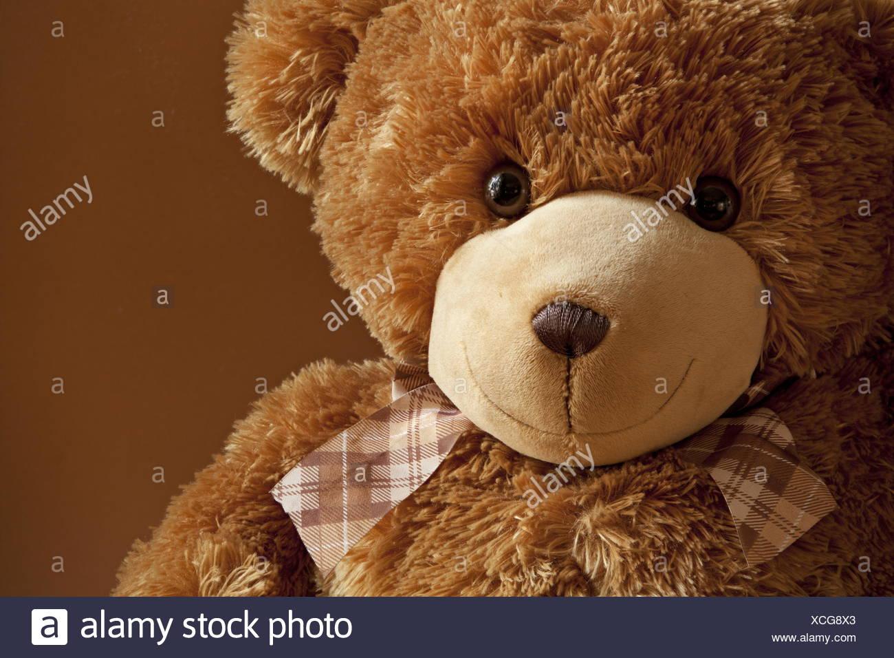 Kind friend plush teddy bear - Stock Image
