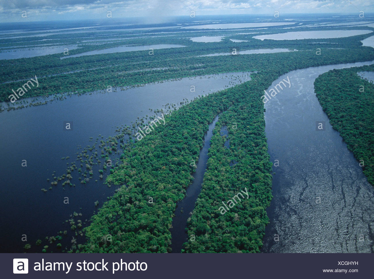 Anavilhanas, Rio Negro/Manaos - Stock Image