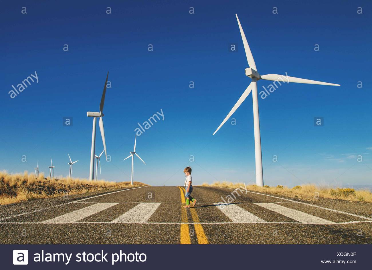 Young boy (2-3) walking across road with wind mills on background Stock Photo