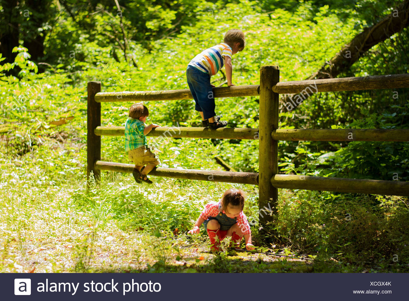 Three children (2-3), (4-5) playing near fence in countryside - Stock Image