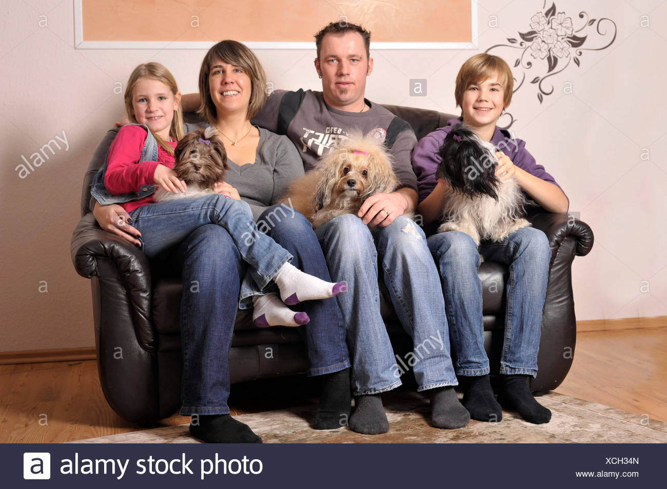 Familie mit Havaneser / family with havanese Stock Photo