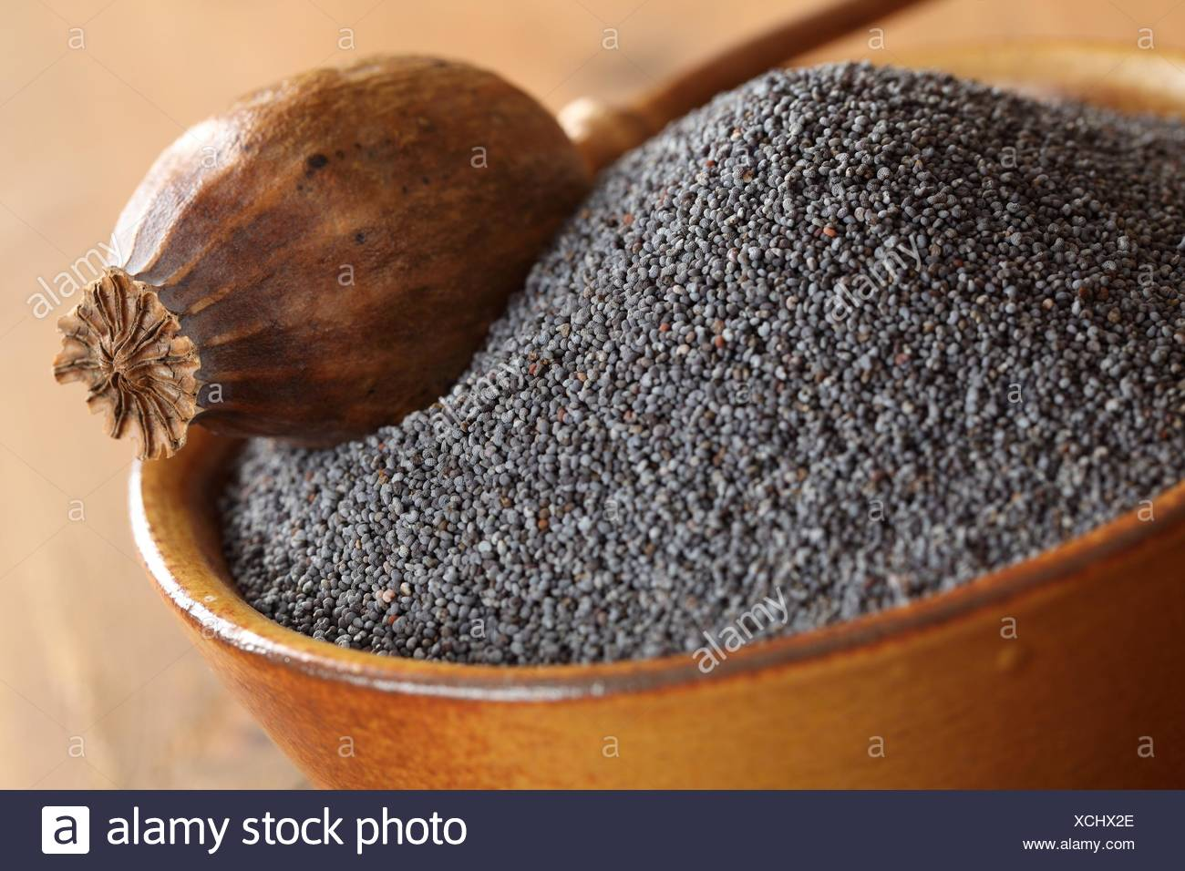 Bowl with poppy seeds and dry poppy pod. - Stock Image