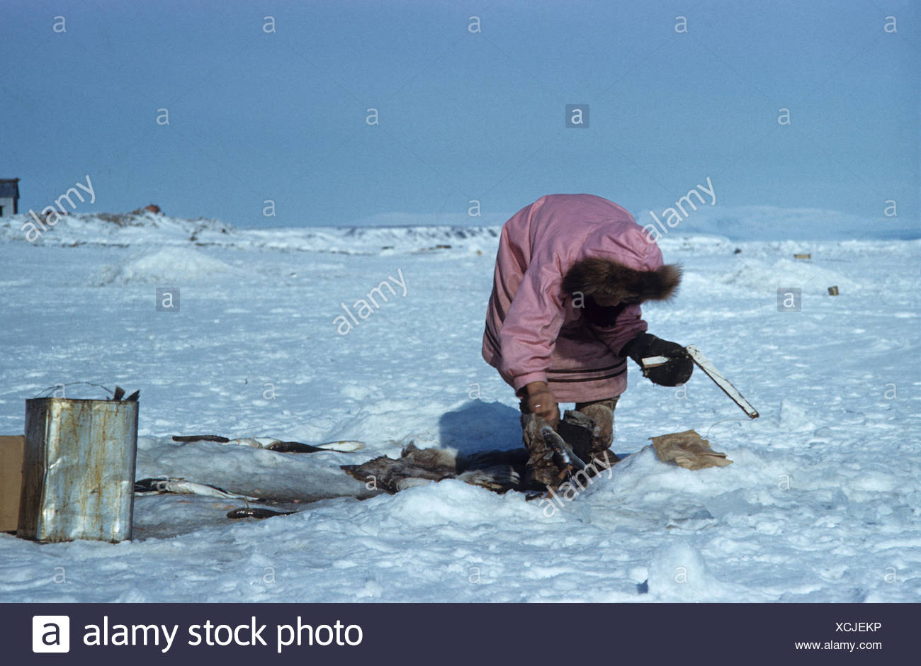 arctic people eskimo inuit old stock photos arctic people eskimo