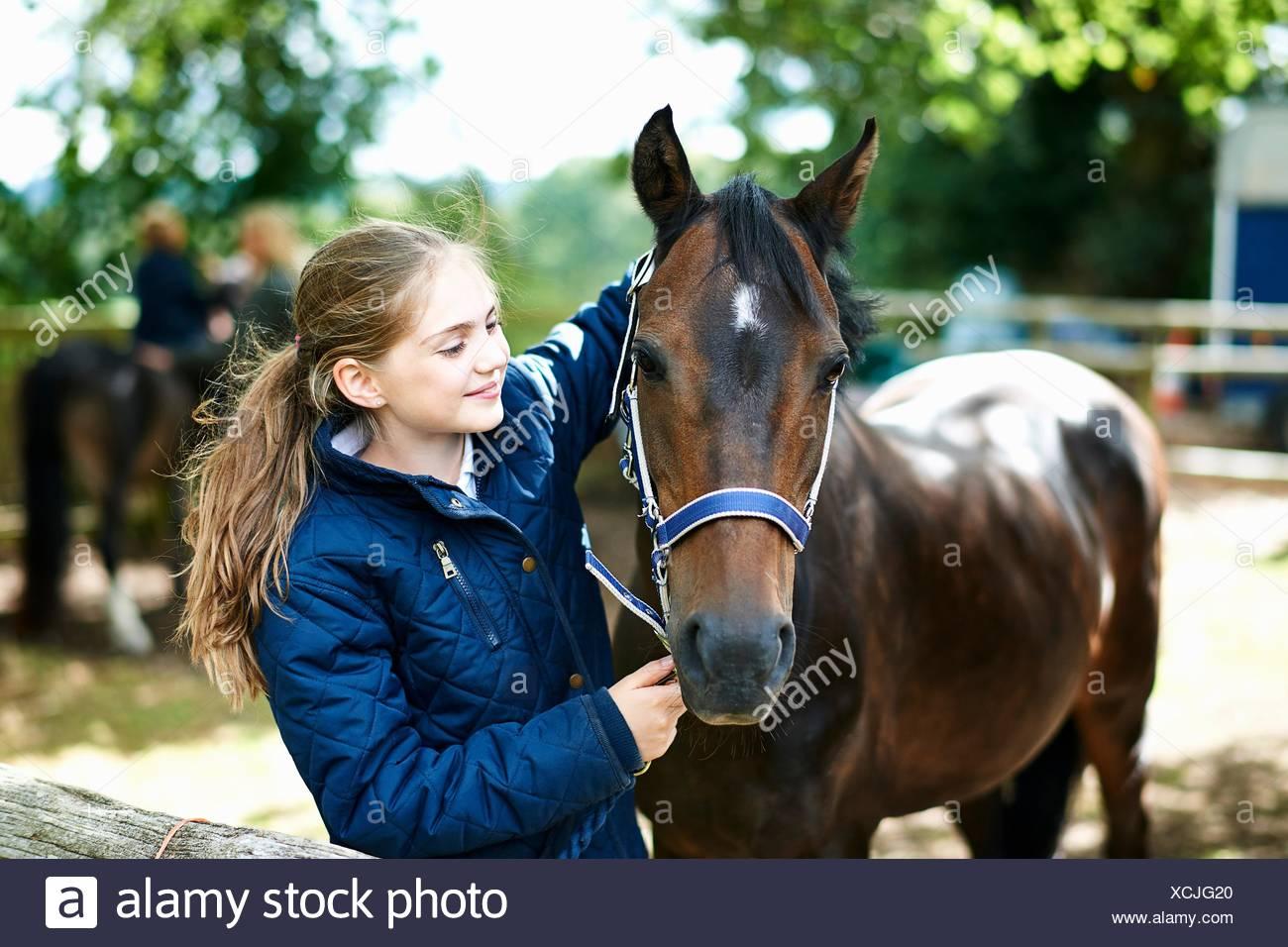 Girl putting halter onto horse - Stock Image