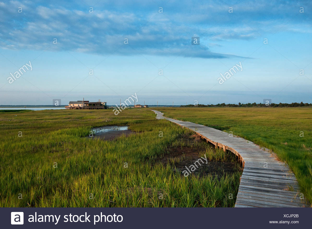 Remote beach shack located on a bay salt marsh, New Jersey, USA. - Stock Image