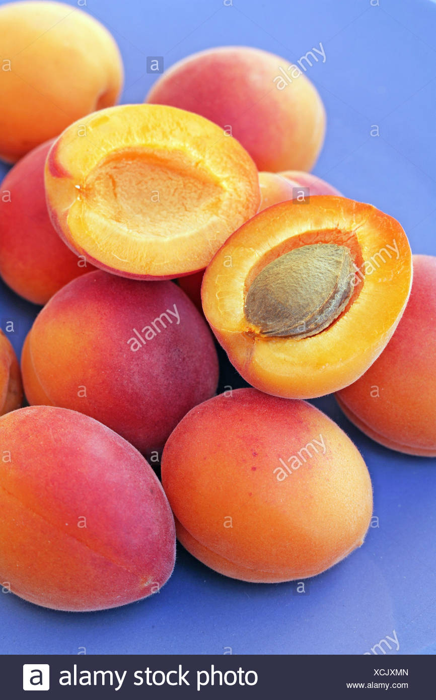 Apricots - Stock Image
