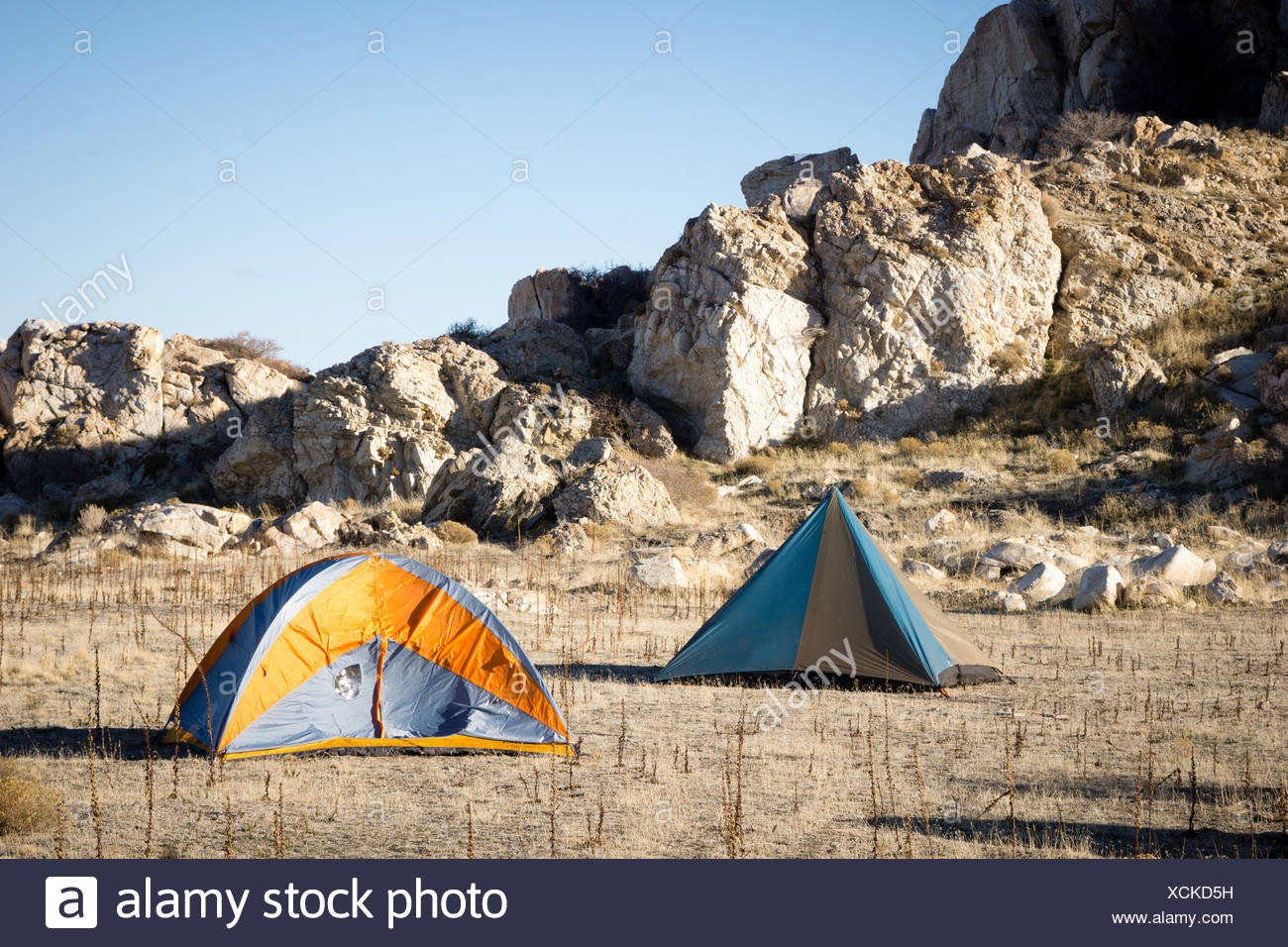 Camping Tents On Field - Stock Image