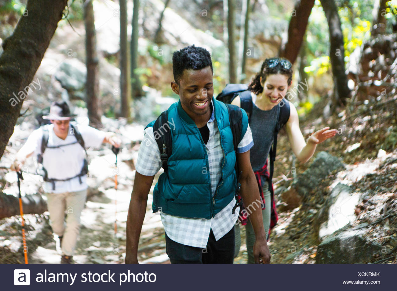 Three young adult hikers hiking up through woodland, Arcadia, California, USA - Stock Image