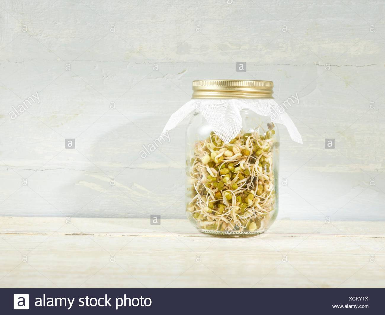 Sprouting mung beans in a jar. - Stock Image