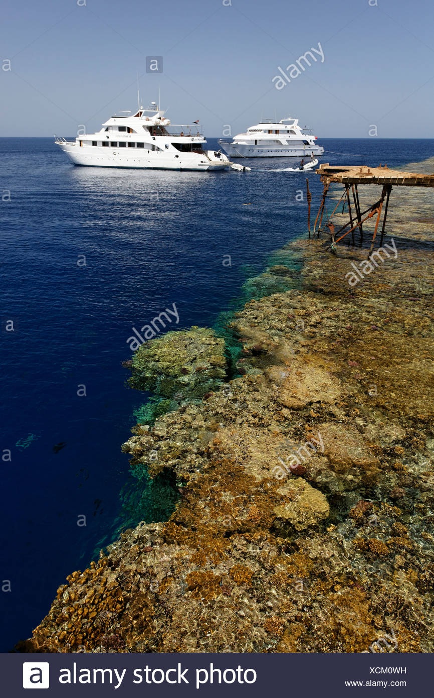 Dive ships anchor off the jetty in front of the reef top, Daedalus Reef, Egypt, Red Sea, Africa - Stock Image