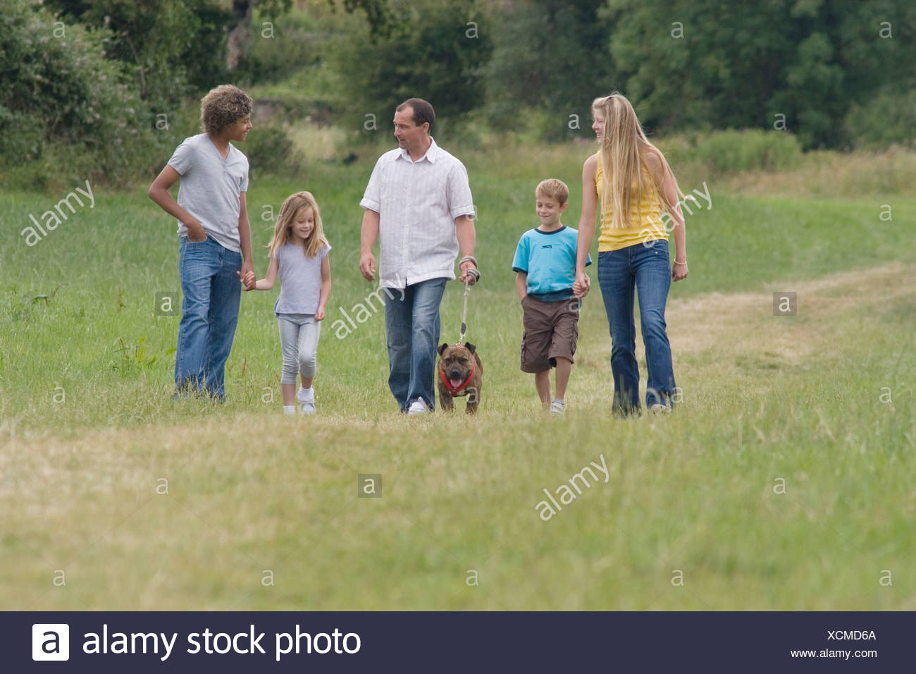 young family walking in countryside with brindle staffordshire bull terrier dog - Stock Image