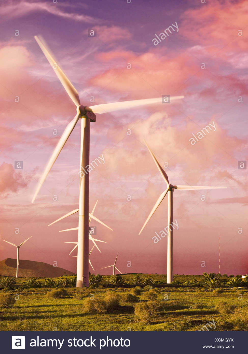 Wind power station, evening mood, Stock Photo