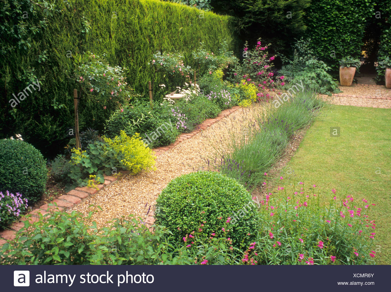 Gravel Brick Path Border Evergreen Leylandii Hedge Lawn Small Garden Design Small Back Garden Planters Stock Photo Alamy