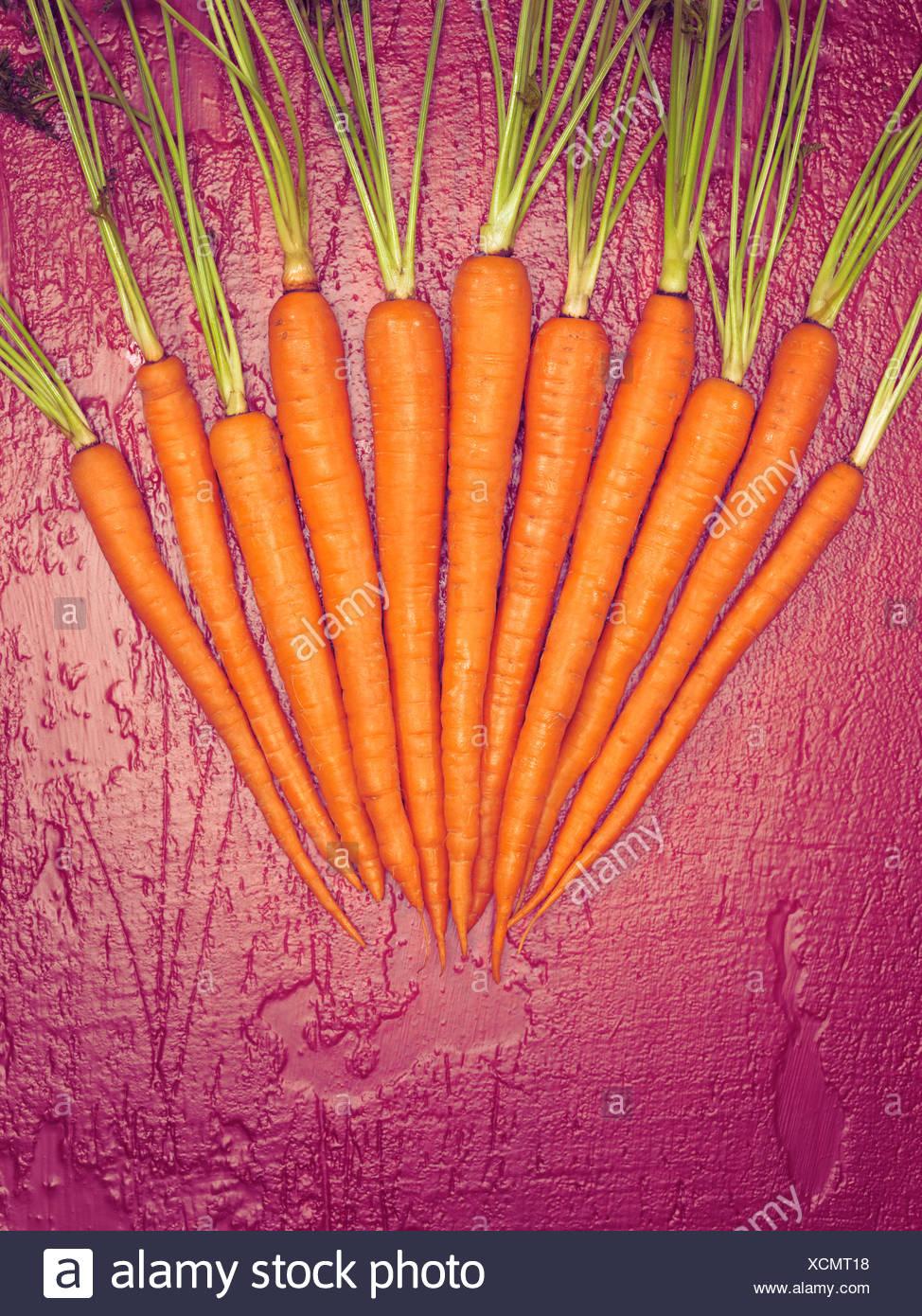 Carrots arranged on magenta underground Stock Photo