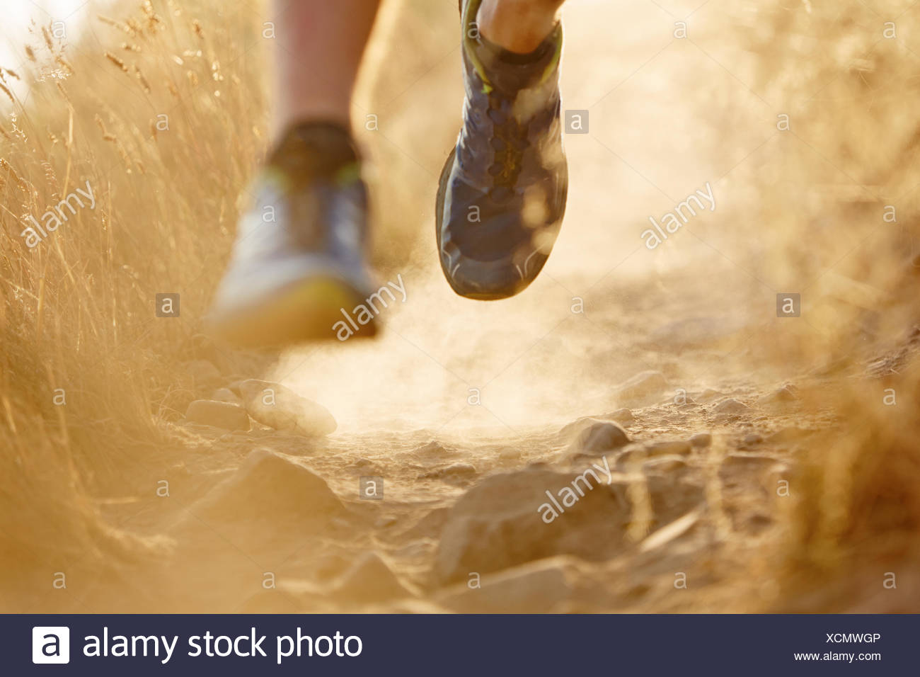 Close up of runner's feet on dirt trail - Stock Image