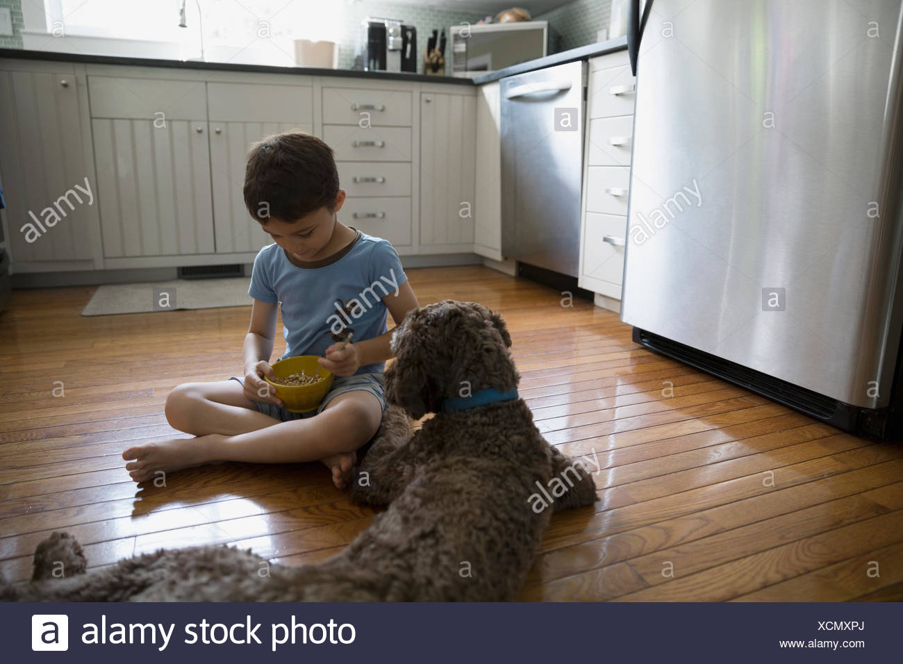 Dog watching boy eat cereal on kitchen floor - Stock Image