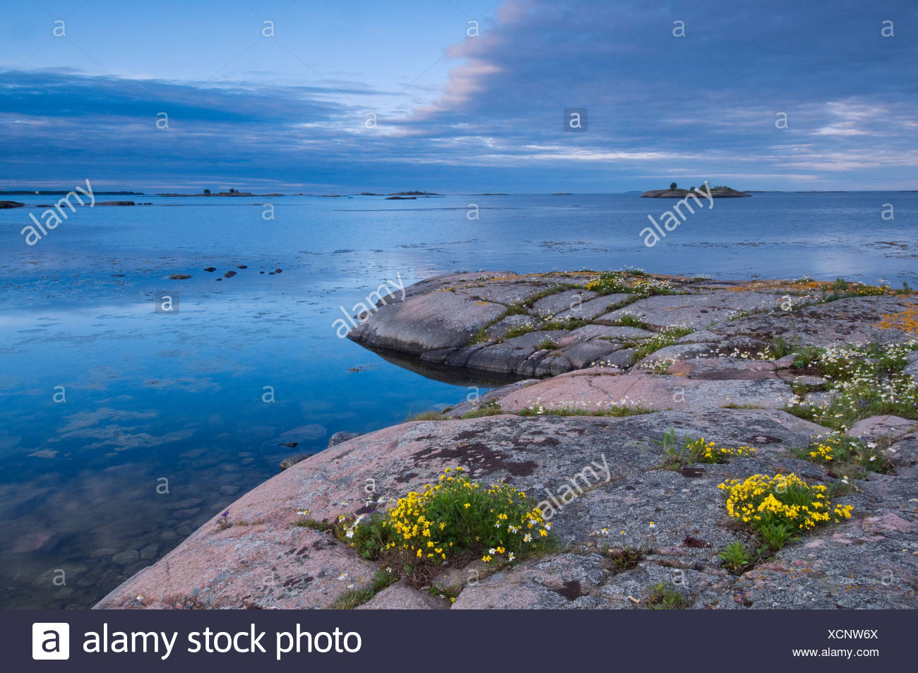 Rocky shore and water Stock Photo