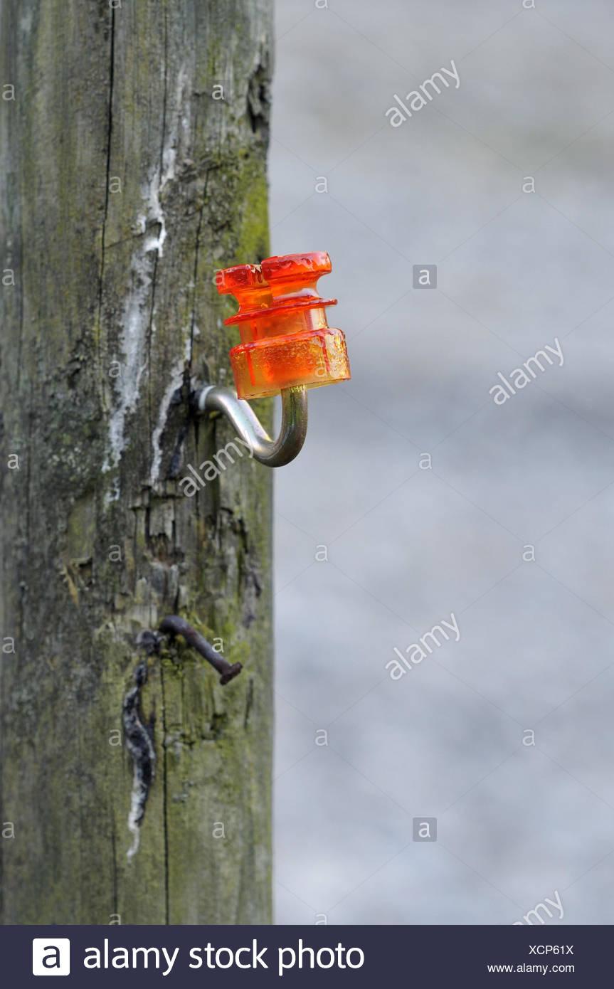 Pasture fence, post, insulator, nail, metal, plastic, orange, - Stock Image