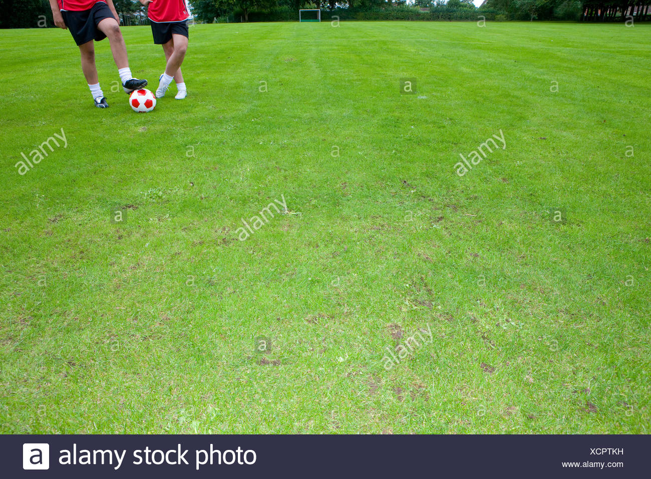 Soccer players with ball standing on field - Stock Image