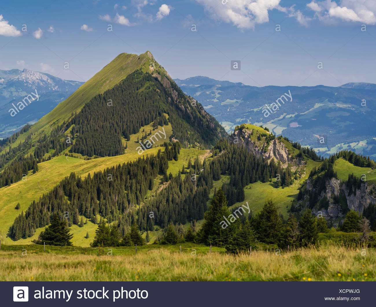 Summery mountain landscape in the Bernese Oberland - Stock Image