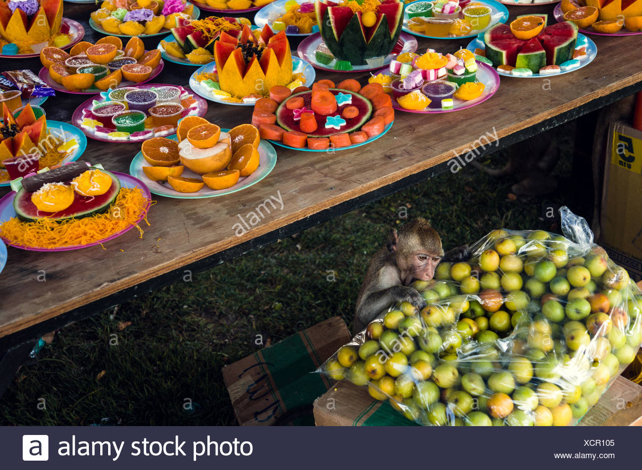 Monkey In Food Stall In Traditional Festival - Stock Image