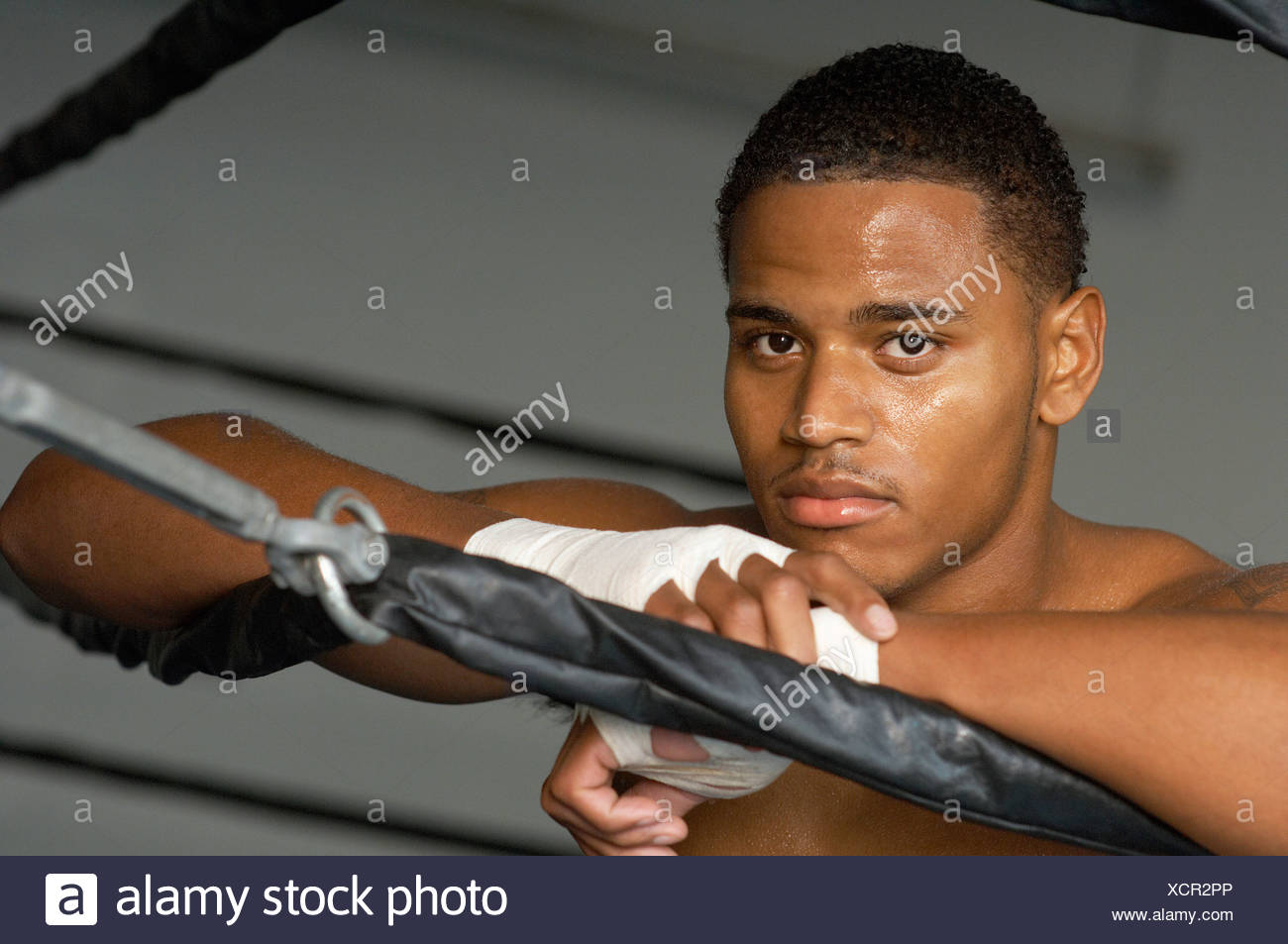 Boxer resting on boxing ring - Stock Image