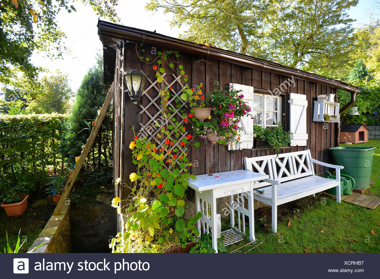 Garten Hütte Herbst Stock Photo 283260299 Alamy
