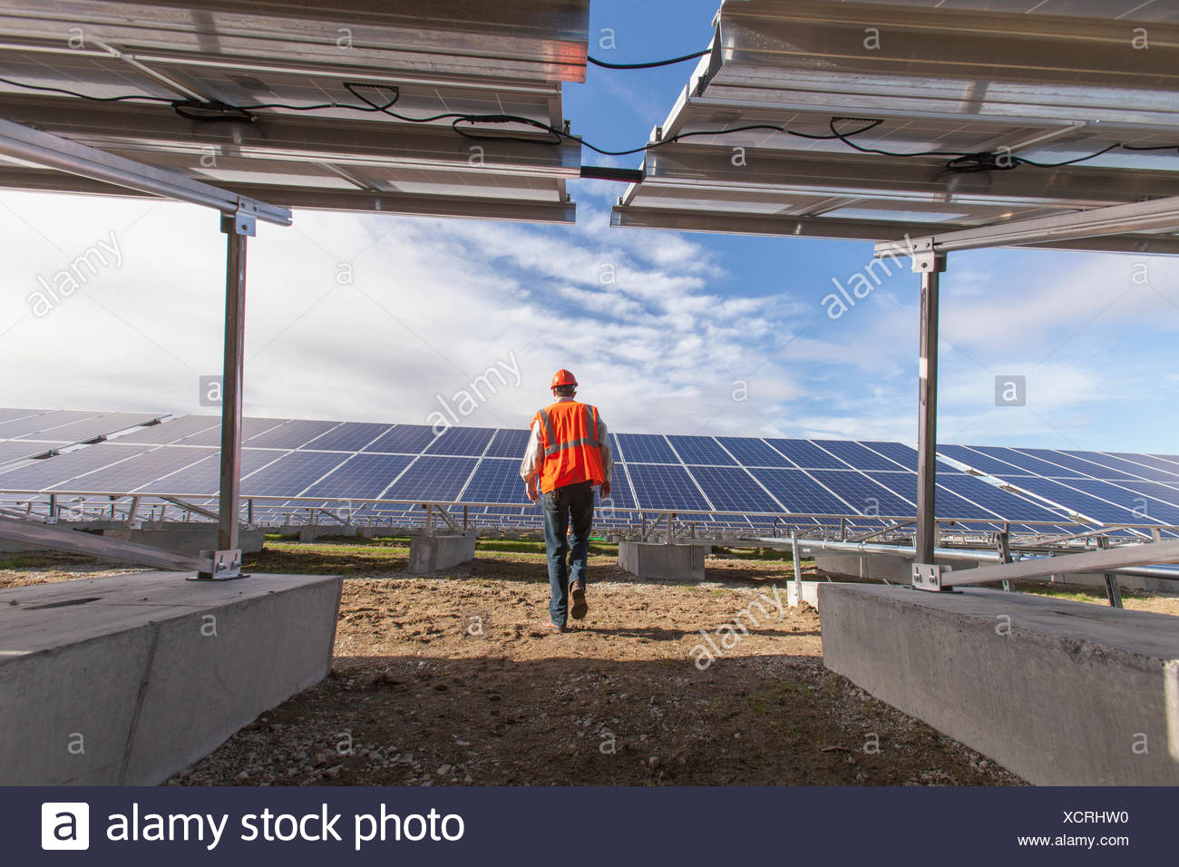 Power engineer walking toward solar photovoltaic array - Stock Image