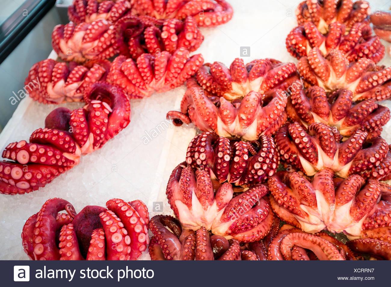 octopus-in-japanese-food-market-XCRRN7.j