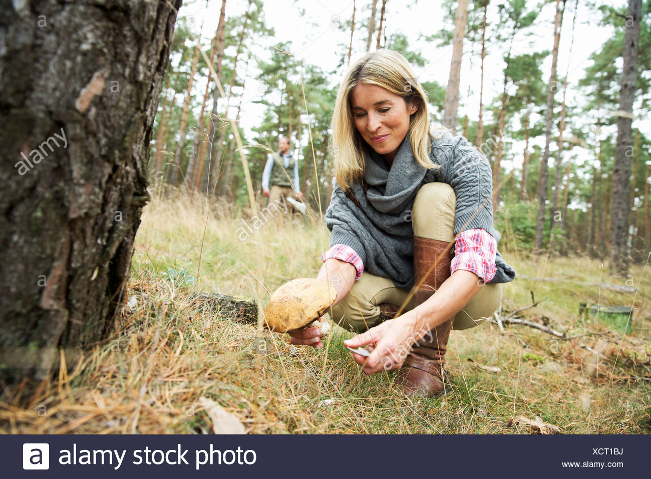 Mid adult woman foraging for mushrooms - Stock Image