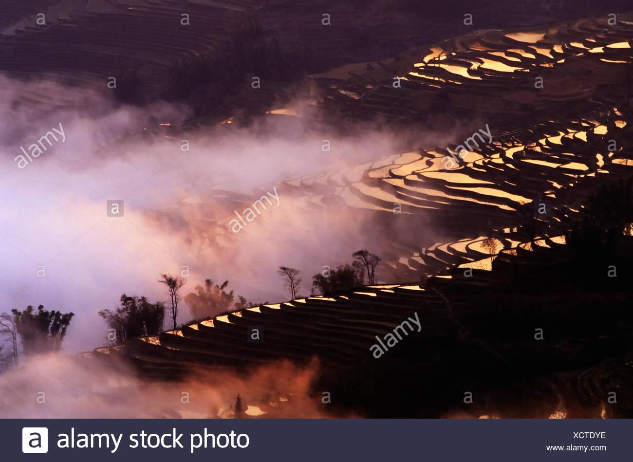 Rice terraces at Bada, Yuanyang, Yunnan, China, Asia - Stock Image