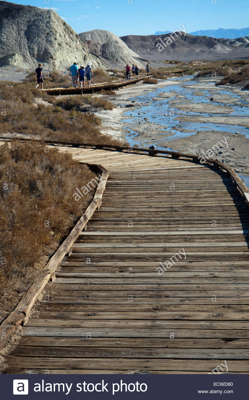 Along the Salt Creek Interpretive Trail in Death Valley National Park, California. - Stock Image