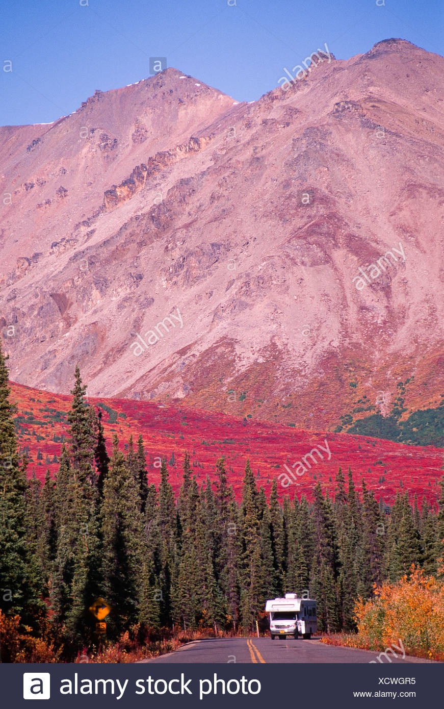 Alaska. Denali NP. Travelers along the Denali Park Rd have amazing views all around them. - Stock Image