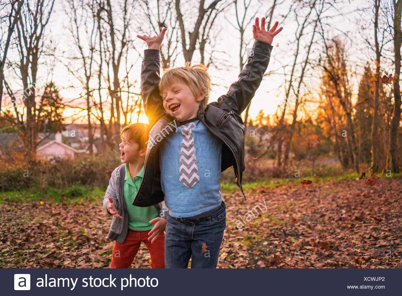 Two boys messing about with autumn leaves - Stock Image