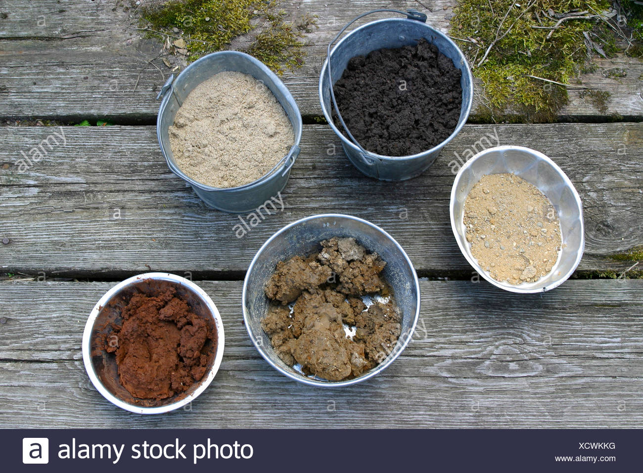 dishes with various colours of soils - Stock Image