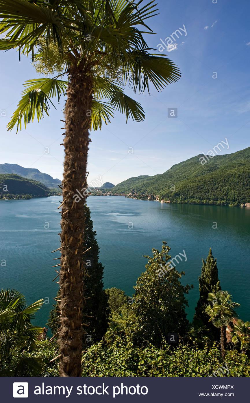 View across Lake Lugano, Lake Lago di Lugano, near Morcote, Ticino, Switzerland, Europe Stock Photo