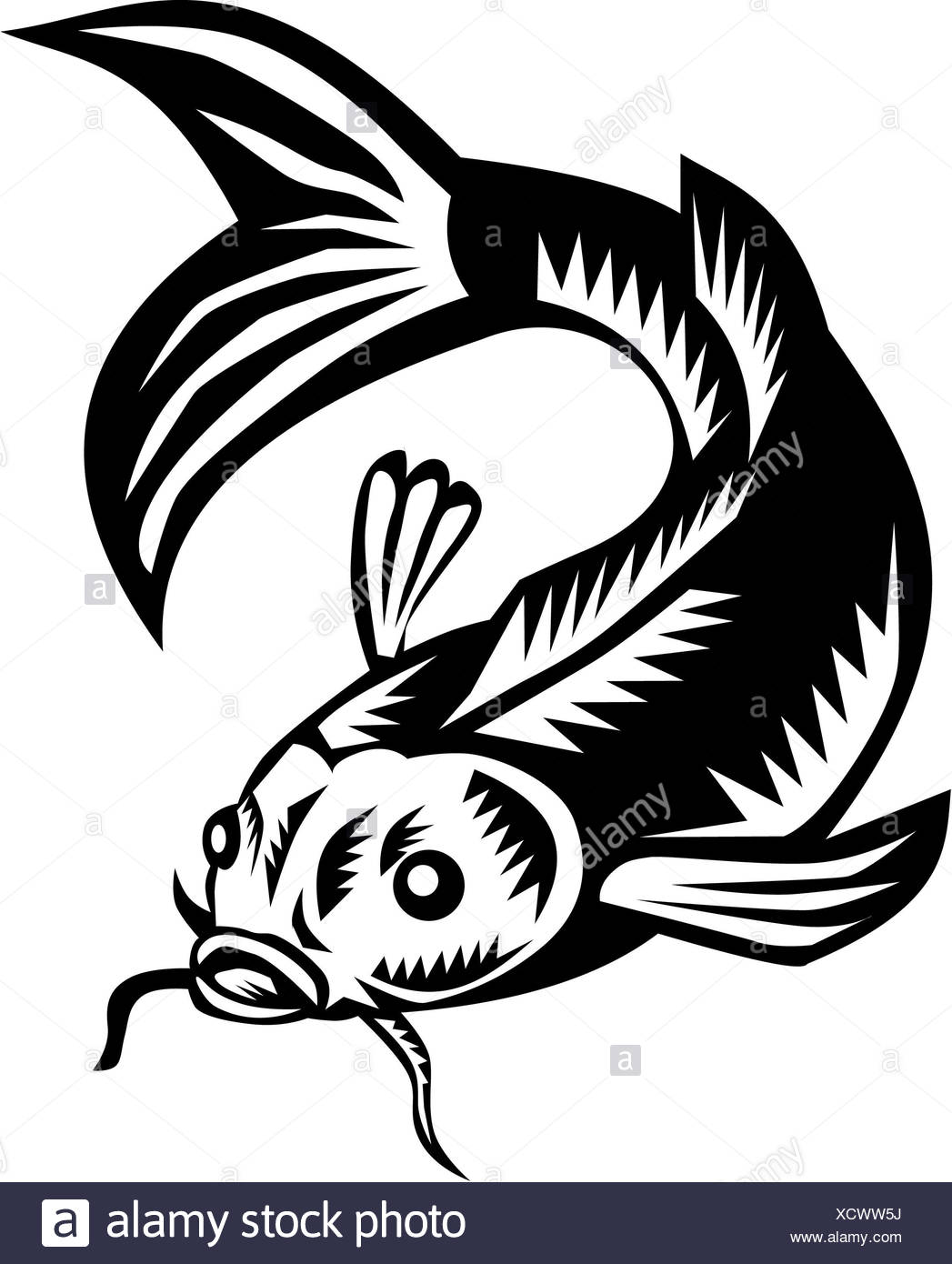 carp black and white stock photos images alamy 18th Century Paintings Men Hand Some koi nishikigoi carp fish woodcut stock image