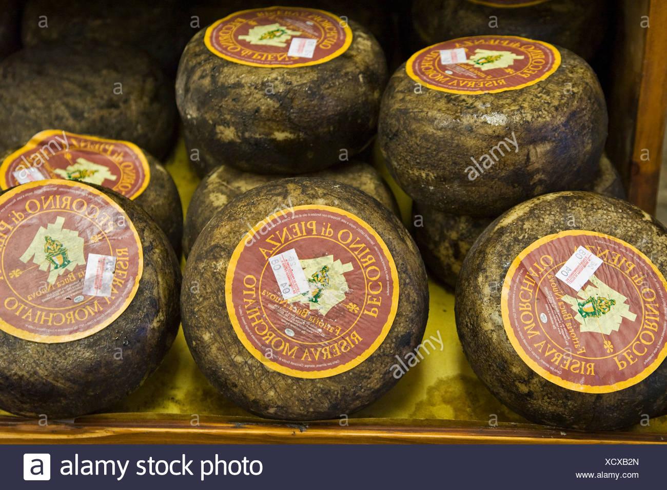 Pecorino Toscano cheese, Tuscan specialty, Tuscany, Italy, Europe - Stock Image