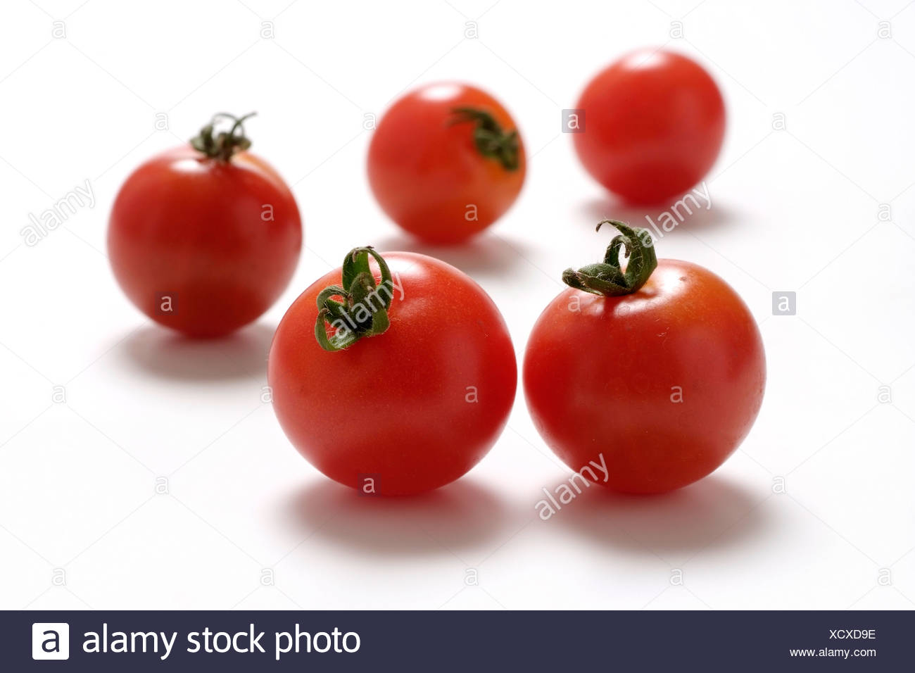 Tomato varieties: Supersweet - Stock Image