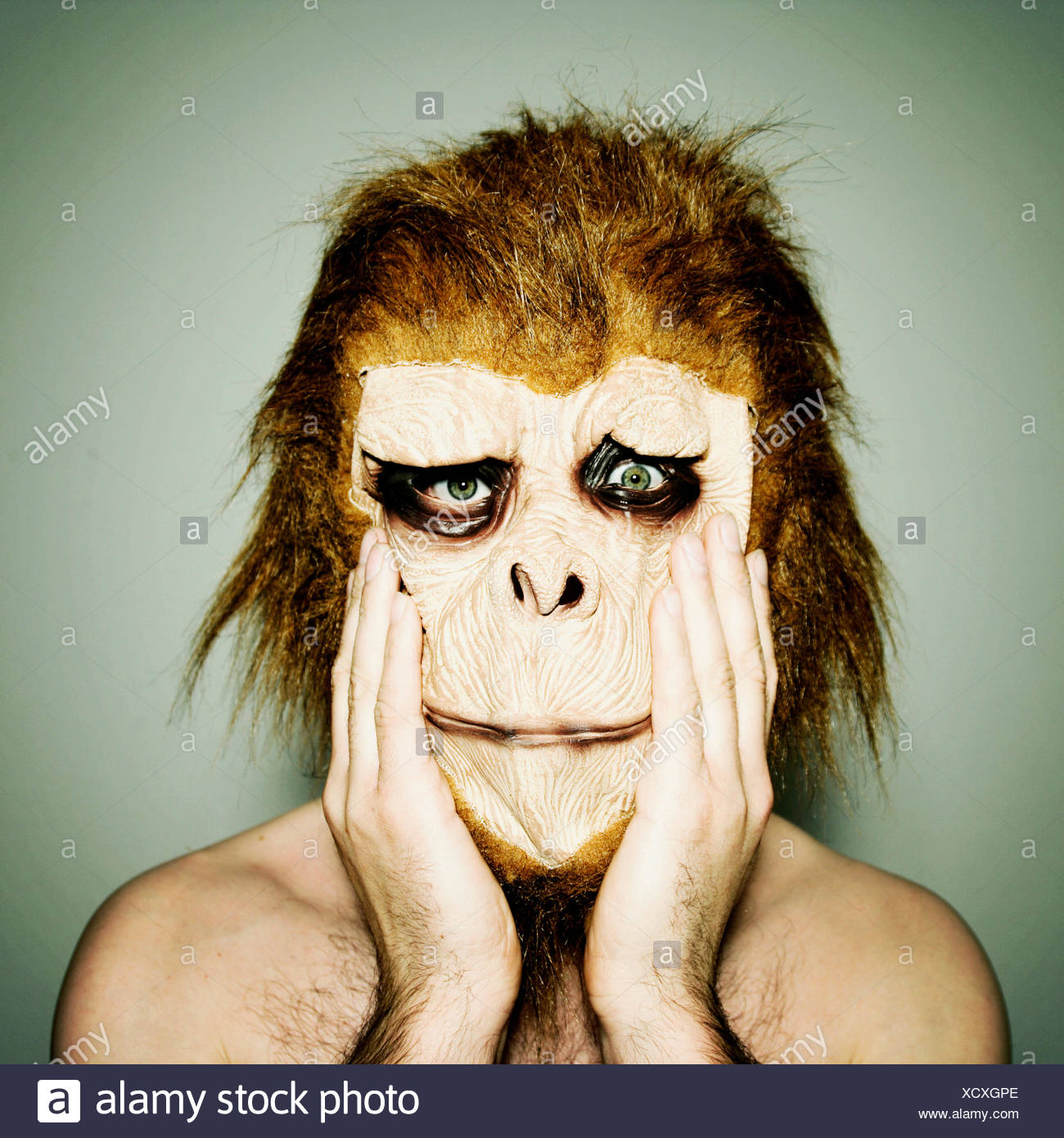 man,humor,bizarre,gorilla,monkey mask Stock Photo
