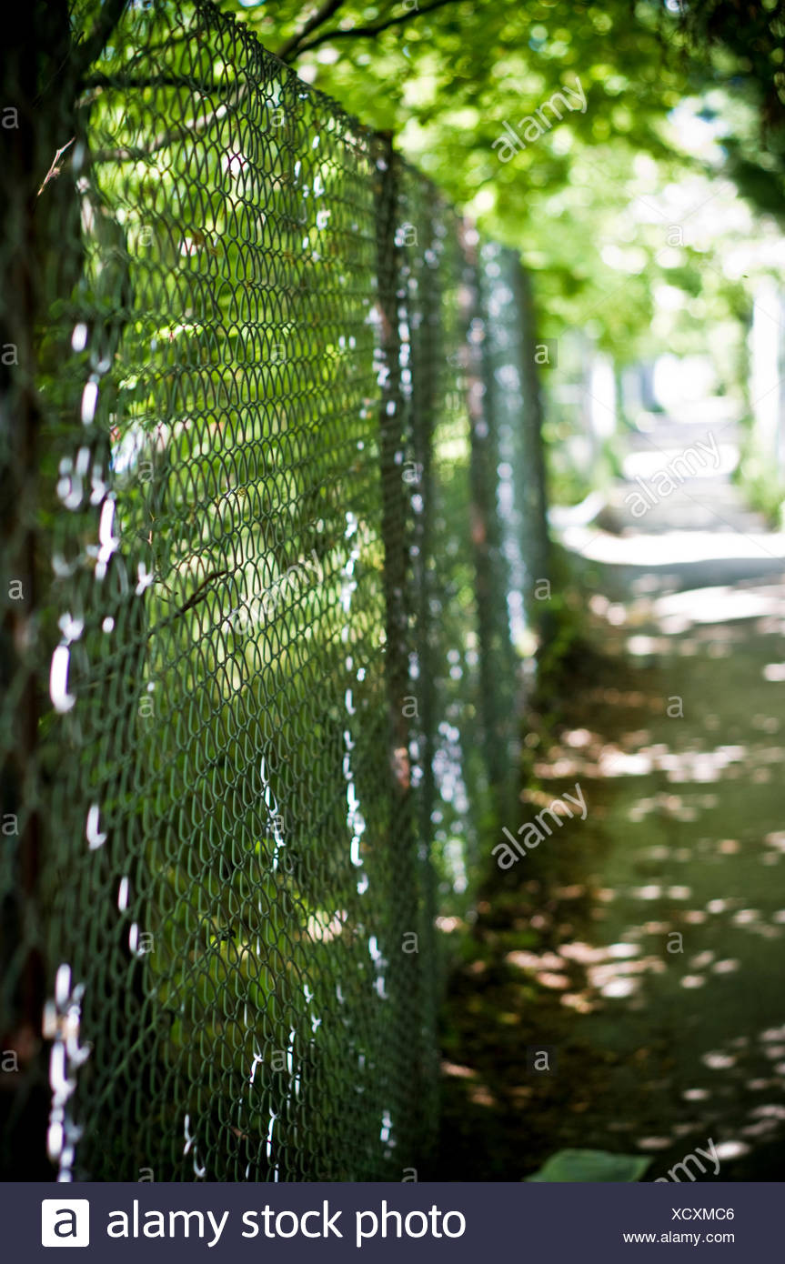 Narrow Footpath By Fence In Park Stock Photo