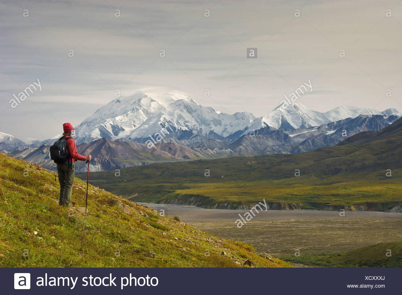 Female hiker views Mt. McKinley in Denali National Park, near Eielson Visitors Center, Alaska, Fall Stock Photo