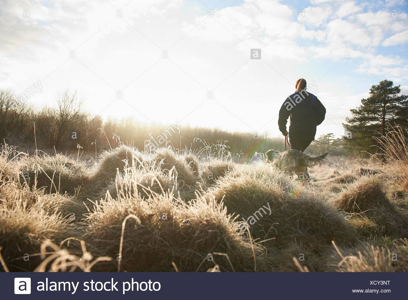 Low angle rear view of mature woman walking dog on grassland - Stock Image