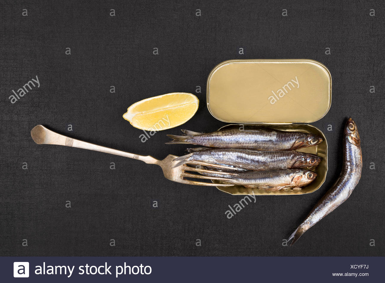 food aliment isolated closeup horizontal angle fish golden steel metal traditional open tin gourmet dish meal container - Stock Image