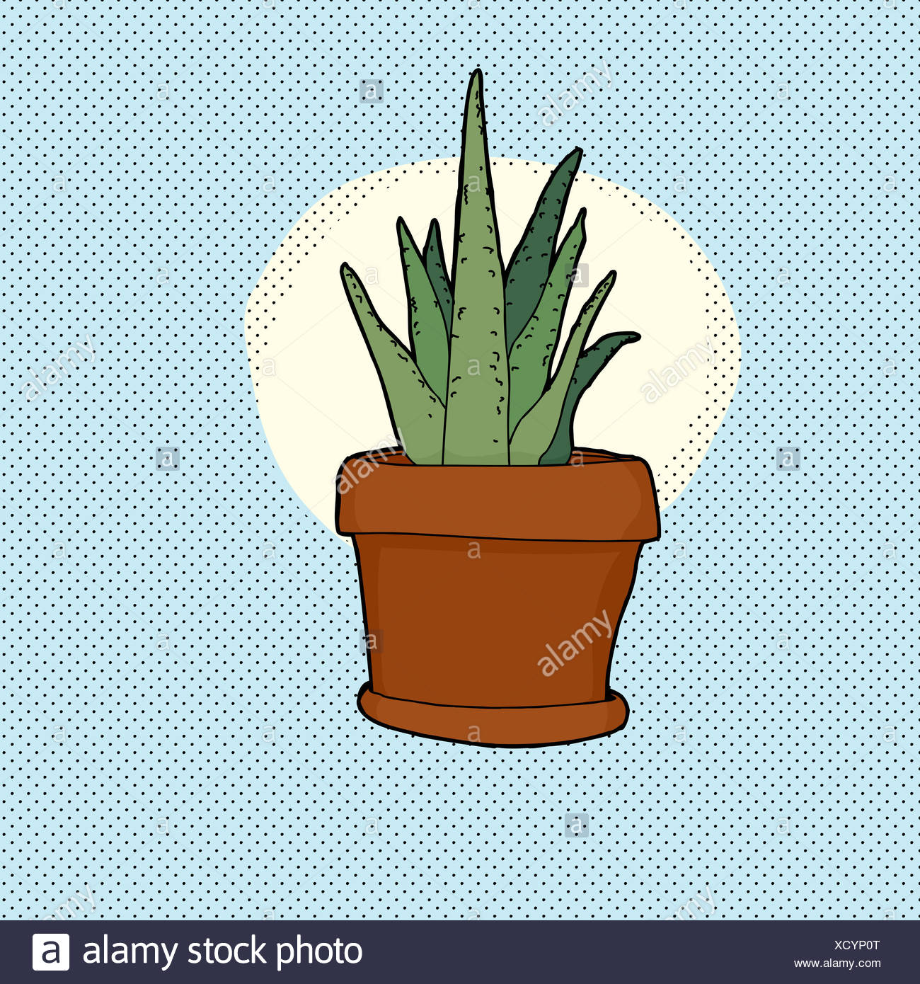Aloe Vera Plant Hand Drawn High Resolution Stock Photography And Images Alamy