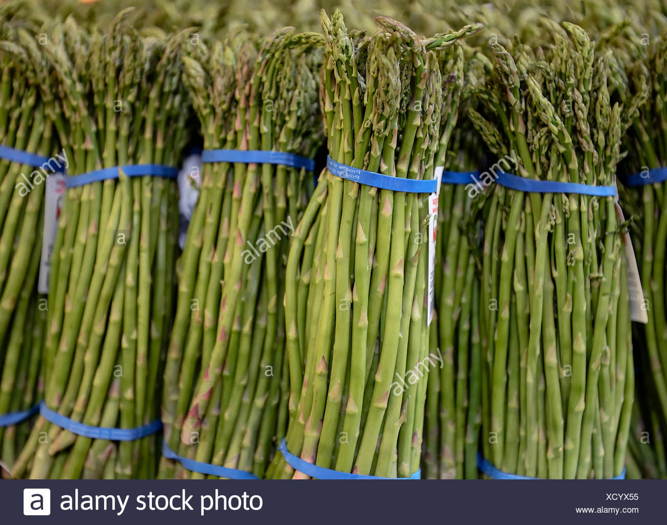 Bundles of organic asparagus in a farmers market. - Stock Image