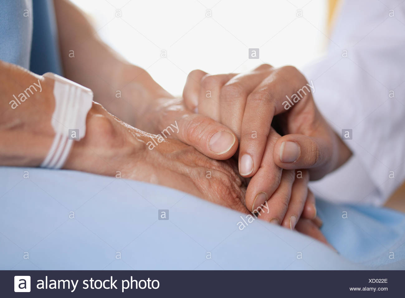 closeup of doctor holding patients hand - Stock Image