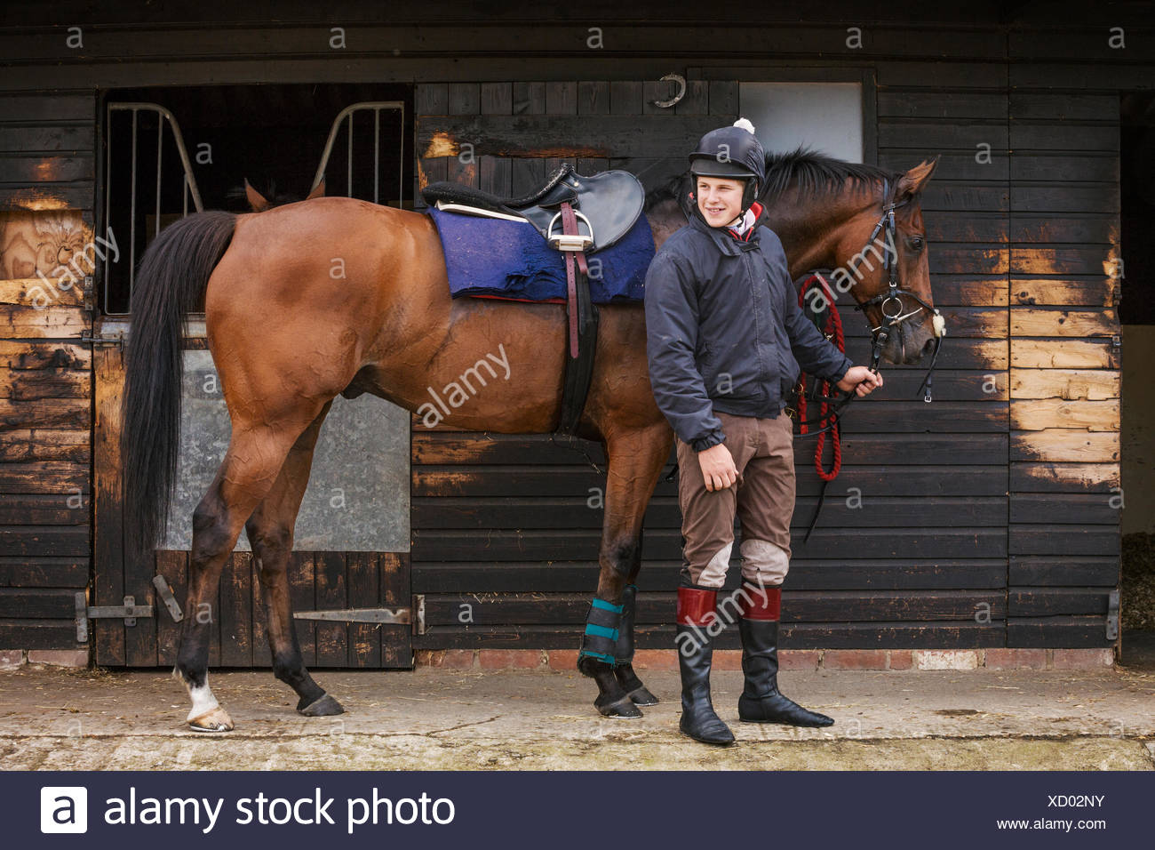 Man Wearing Riding Gear Standing Outside A Box Stall At A Stable Holding A Brown Horse Stock Photo Alamy